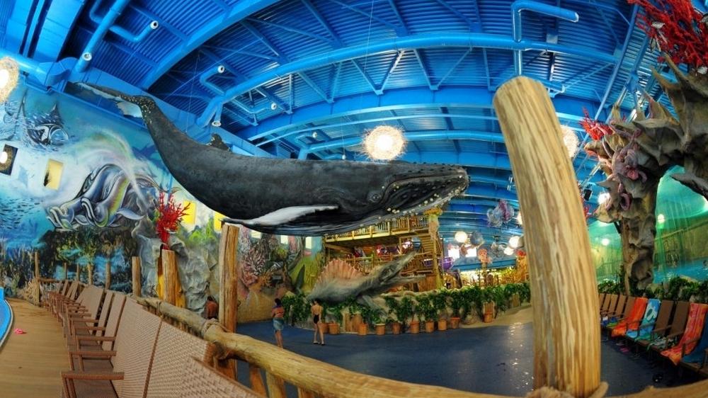 аквапарк в дрим тауне фото и цены